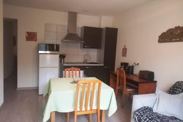 Photo Appartement T1 avec terrasse à Aix les Bains